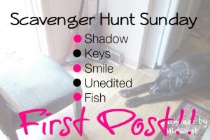First Post Scavenger Hunt Sunday on southeastbymidwest.com #scavengerhuntsunday