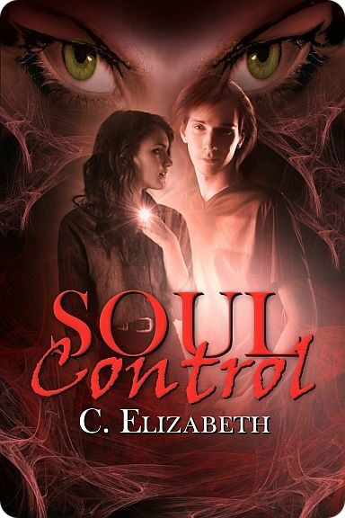 Soul Control by C. Elizabeth Review on southeastbymidwest.com #bookreviews