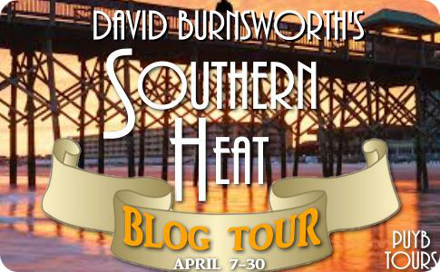 Southern Heat by David Burnsworth Review