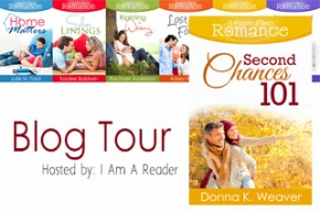 Second Chances 101 by Donna K Weaver Review