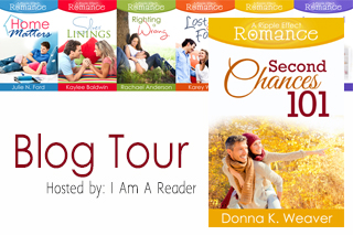 Second Chances 101 Blog Tour on southeastbymidwest.com #bookreview