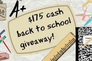 $175 Cash Giveaway on southeastbymidwest.com #cashgiveaway #giveaway