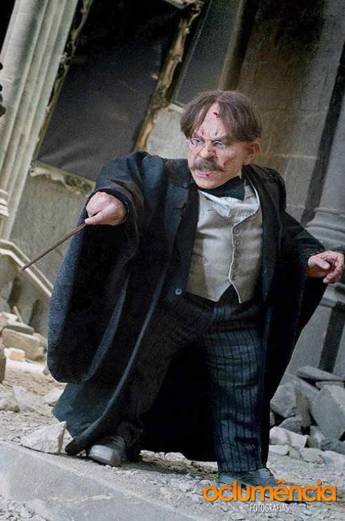 Professor Flitwick Harry Potter #geeky #beauty #5fandomfriday #harrypotter