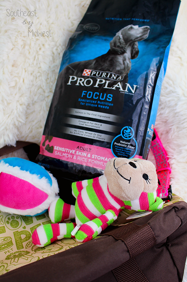 DIY Gift Basket to Pamper Your Pet    Southeast by Midwest #ad #cbias #TheDogumentaries